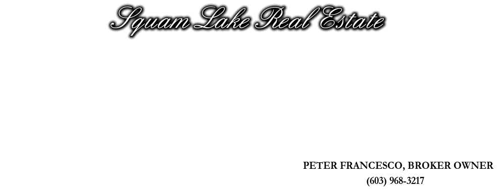 Squam Lake Real Estate, PETER FRANCESCO, BROKER OWNER, (603) 968-3217